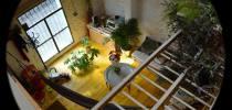 Coworking Sevilla Coworking La bañera del Pelícano