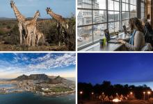 CoWorking Safari - South Africa