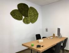 Coworking Valladolid Finner Coworking
