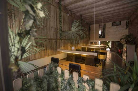 Coworking Barcelona Jungle studio&coworking